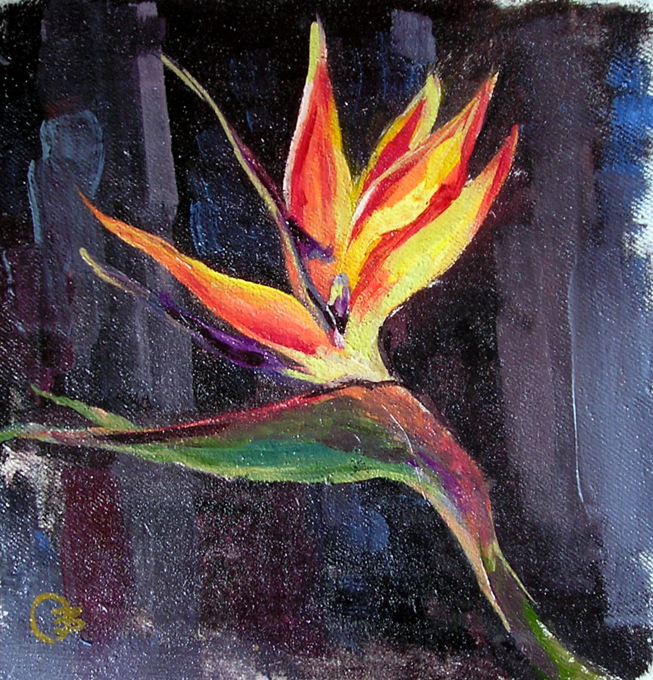 Strelitzia. Bird of Paradise. Oil, Canvas 2013